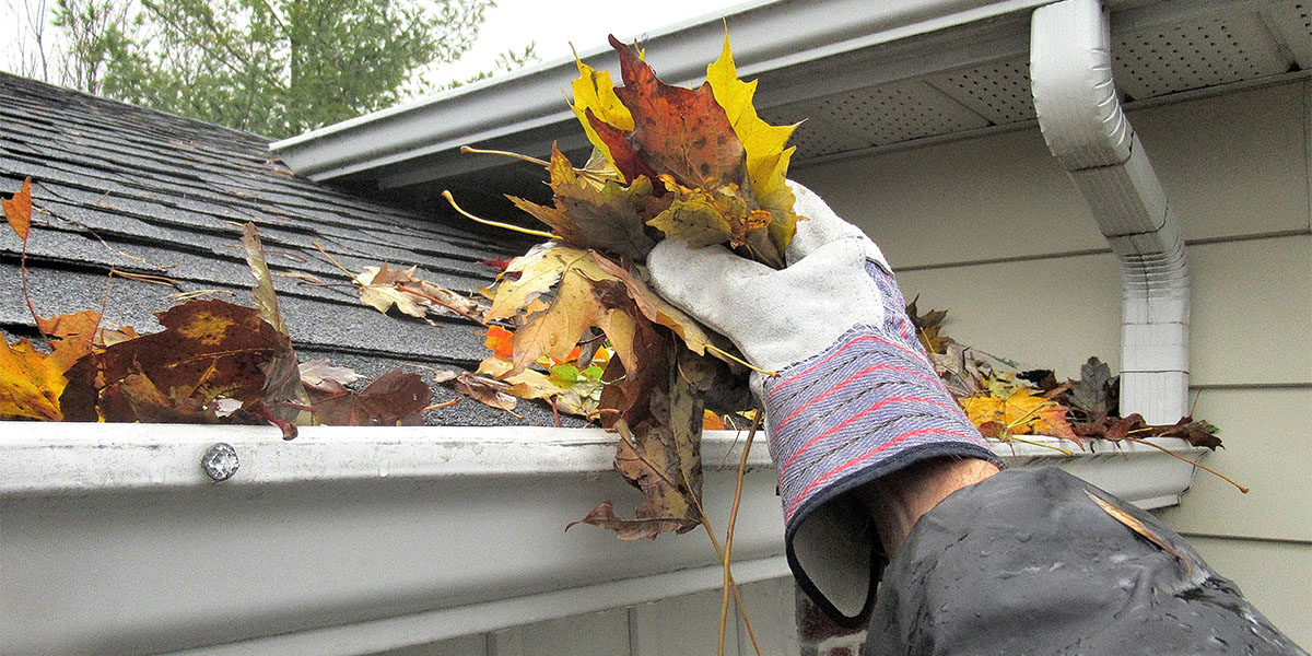 gutters 5 Tips For Fall Cleaning