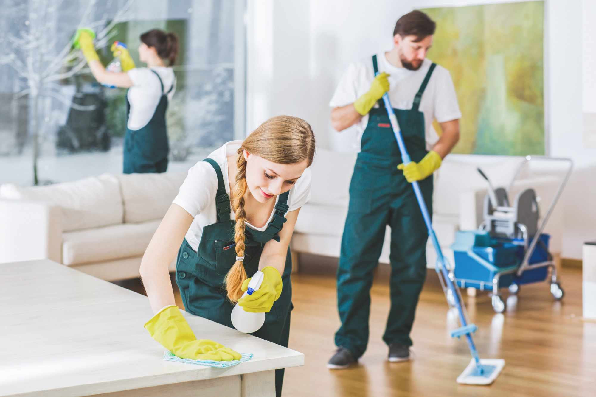 Looking for a House Cleaner 12 Tips for Hiring a Home Cleaning ...
